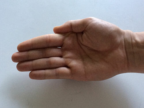 This image shows a flat hand