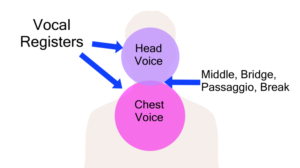 The 8 Singing Voice Types: Find Out Yours Here!