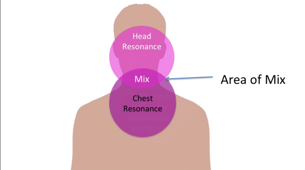 diagram showing singing bridge between head and chest voice