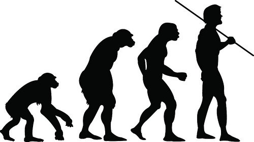 man's evolution from ape to human