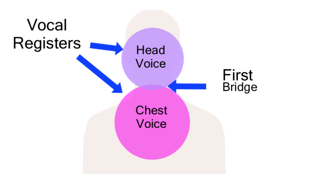 a diagram of the vocal registers