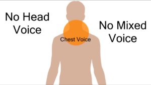 diagram showing where chest voice (lower register) is