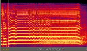 A spectogram of a wavering vibrato