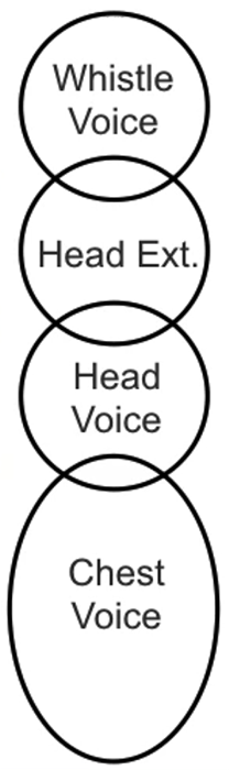 A chart showing chest voice, head voice, extended head voice and whistle registers.